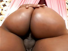 Sexy black bbw fucked