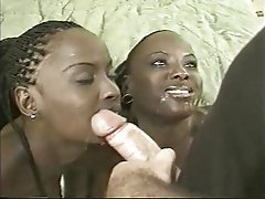 Babe, Interracial, Small Tits, Threesome